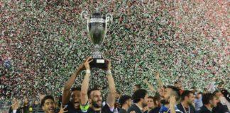 Cosenza e Palermo completano la serie B 2018/2019. I calabresi battono il Siena e riapprodano in cadetteria dopo 15 anni. Il Frosinone vince e torna in A, ma i siciliani presentano reclamo